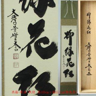 「柳緑花紅」軸 一行書 小林太玄筆