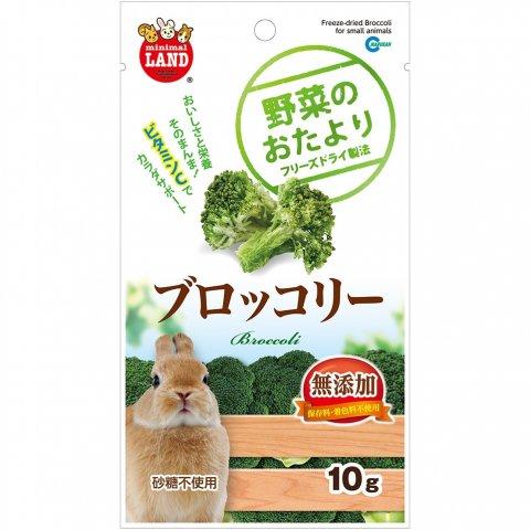 野菜のおたより ブロッコリー ミニマルランド 10g | マルカン