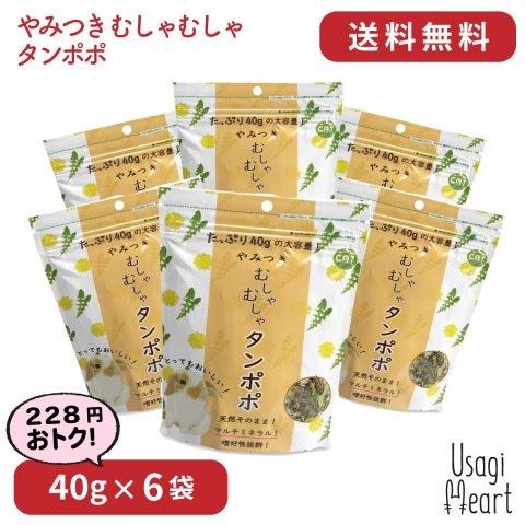 【セット商品】やみつき むしゃむしゃタンポポ 40g×6袋 | カワイ