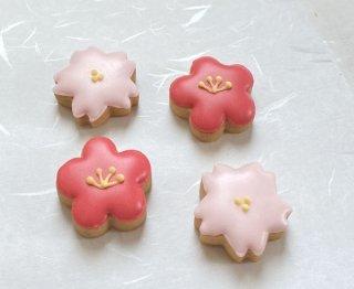 アイシングクッキー「梅と桜」