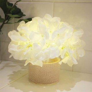 ハイドランジアグラスLED/White