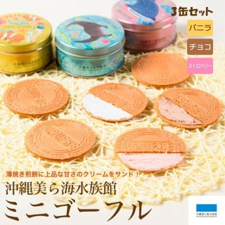 沖縄美ら海水族館ミニゴーフル(3缶入)