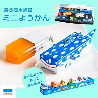 <img class='new_mark_img1' src='https://img.shop-pro.jp/img/new/icons12.gif' style='border:none;display:inline;margin:0px;padding:0px;width:auto;' />沖縄美ら海水族館ミニようかん
