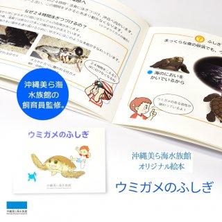 沖縄美ら海水族館オリジナル 絵本 ウミガメのふしぎ