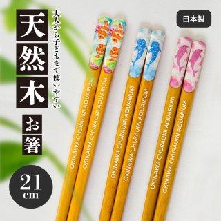 沖縄美ら海水族館オリジナル 美ら海お箸(全3種)