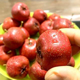 【新鮮フルーツ】中国産新鮮山査500g