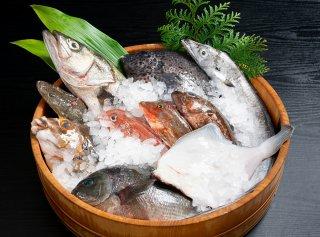 おすすめの鮮魚詰合せ