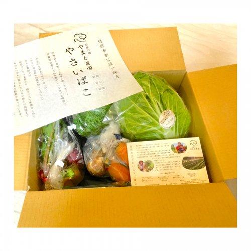 【加賀の國 やまと農園】楽しい野菜の宝箱「やさいばこ」 *送料着払い商品