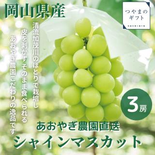 岡山県産シャインマスカット(9月以降順次出荷)