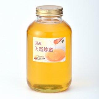 国産天然蜂蜜【マロニエ(トチ)】〈2.4kg〉