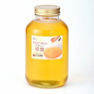 ウワミズザクラ〈2.4kg〉(富山県で採れた美味しい蜂蜜)