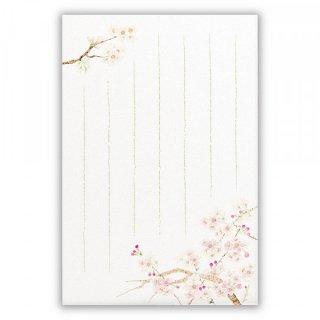 KHSポストカード 桜さくら