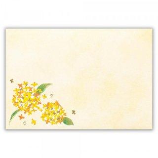 封筒 秋色 金木犀