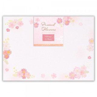封筒 押し花 ピンク