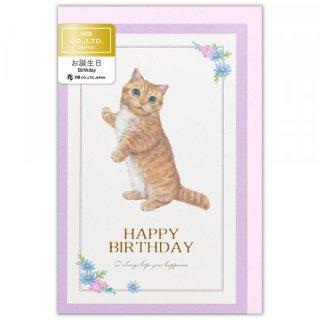 カード Minou 誕生日 ミミ