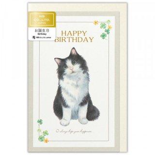 カード Minou 誕生日 ポール