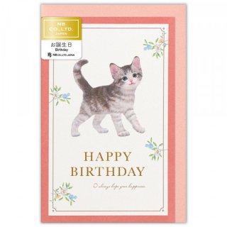 カード Minou 誕生日 ルーナ
