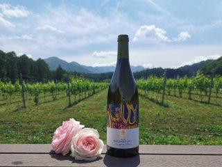 2019 信州たかやまワイナリー Sauvignon Blanc