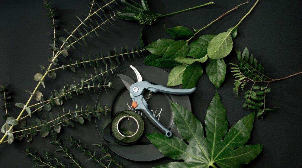 おうちで作ろう 「苔と観葉植物をつかったインテリアグリーン BOX 」 『 ご当地自慢 知多木綿限定ギフト 』