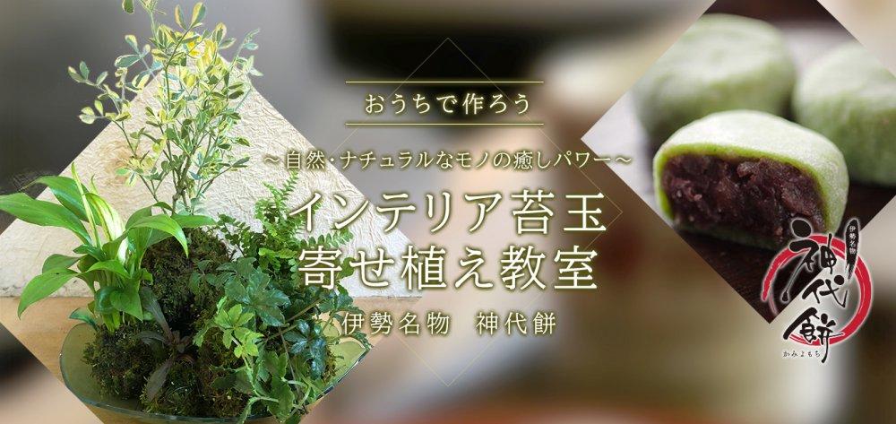 おうちで作ろう 「自然・ナチュラルなモノの癒しパワー インテリア苔玉寄せ植え教室」 & 勢乃國屋  神代餅