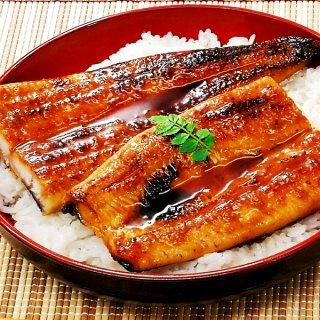 鹿児島産 特大うなぎ蒲焼き 約170g×2尾 送料無料