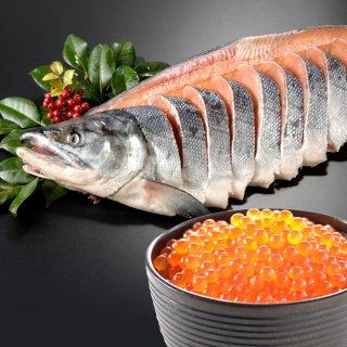 いくら+北海道産 新巻鮭一本物 姿切り 送料無料