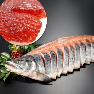 北海道産 新巻鮭一本物 姿切り+天然紅鮭筋子 230g 送料無料