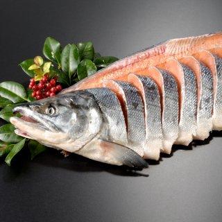 北海道産 新巻鮭一本物 姿切り約2.0kg 送料無料