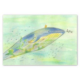Post card mariya クジラの王様