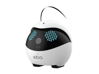 ペット用 スマートロボット Ebo  イーボ  標準版