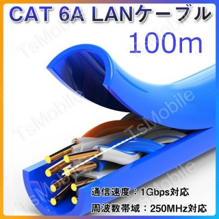 CAT 6A LANケーブル100m 100メートル 1ギガビット 250MHz 光回線対応