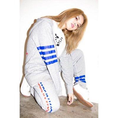 full zip hoodie<br />sweat (tricolore logo) gray