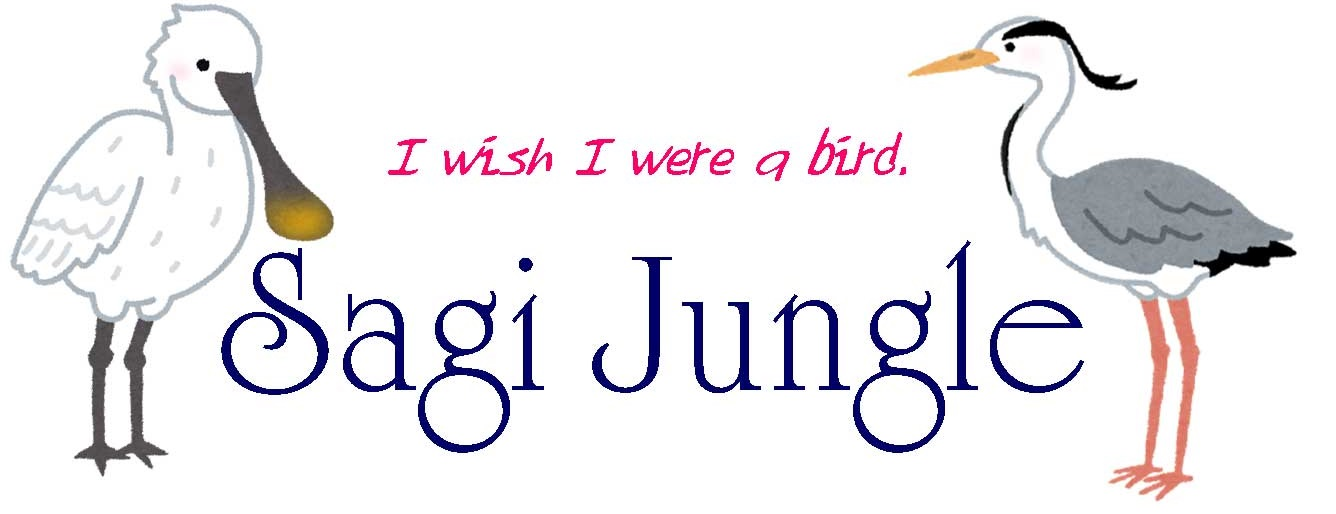 Sagi Jungle
