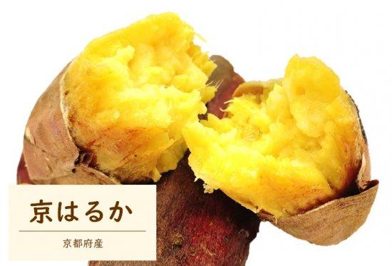 京はるか 焼き芋1�の写真