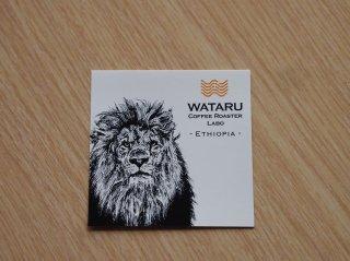 動物ロゴシール「エチオピア」