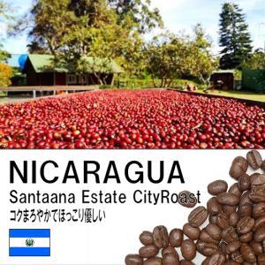 <img class='new_mark_img1' src='https://img.shop-pro.jp/img/new/icons1.gif' style='border:none;display:inline;margin:0px;padding:0px;width:auto;' />ニカラグア・サンタアナ農園・シティロースト 670円(税込)/100g