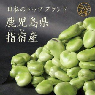 朝摘みそら豆 2.5�