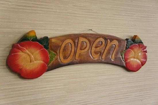 ハイビスカスオープンボード NP-004O