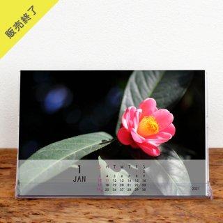 金子美香 | 卓上カレンダー【Bパターン】(2021年1月はじまり)【KG】