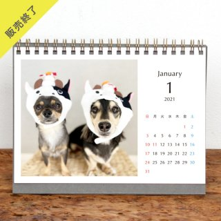 ほたまる。 | 卓上リングカレンダー(2021年1月はじまり)【2L】