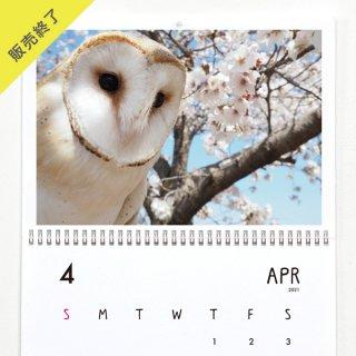 ちゃす | 壁掛けカレンダー(2021年4月はじまり)【A3】