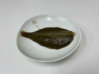 桜葉パック 500枚