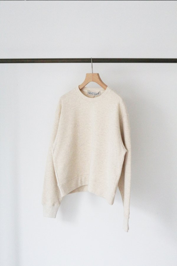 <img class='new_mark_img1' src='https://img.shop-pro.jp/img/new/icons8.gif' style='border:none;display:inline;margin:0px;padding:0px;width:auto;' />loopwheel jersey crew neck pull over
