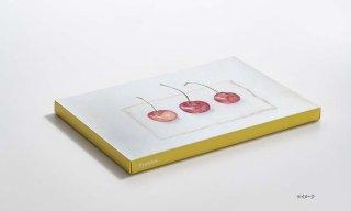 紙キャンバス KOGUCHI / YELLOW / B5サイズ