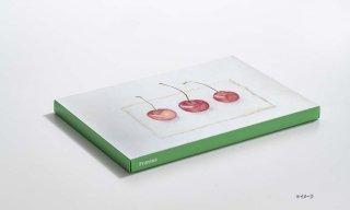 紙キャンバス KOGUCHI / GREEN / B5サイズ