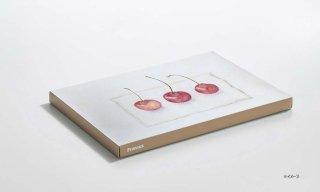 紙キャンバス KOGUCHI / BEIGE / B5