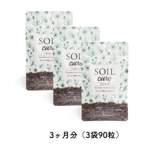 SOILcureさしくさファミリーバリューパック3ヶ月分(3袋90粒)