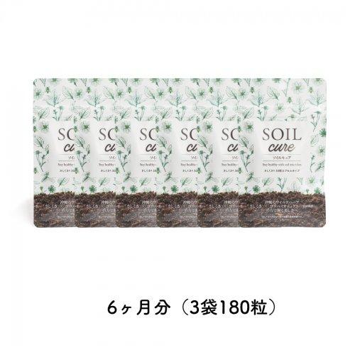 SOILcureさしくさファミリーバリューパック6ヶ月分(6袋180粒)