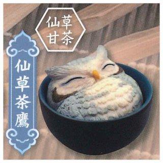 海外デザイナーシリーズ 幸せのふくろう茶 [5.仙草茶鷹 仙草甘茶]【 ネコポス不可 】【C】