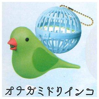 うたう小鳥ライト [1.オナガミドリインコ]【 ネコポス不可 】
